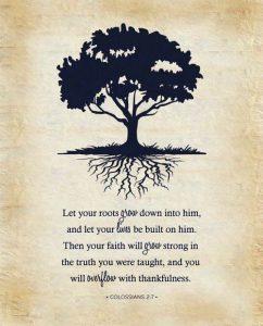 roots grow deep