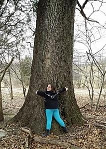 teresas_big_tree
